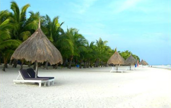 Panglao Island Beach Resort