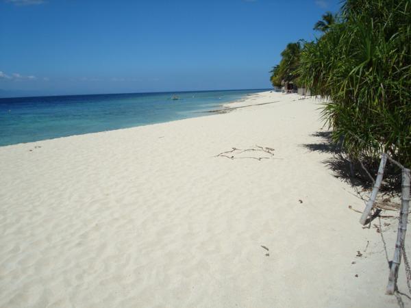 Moalboal Resort