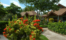 camotes resorts cebu