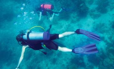 ariara island_scuba diving