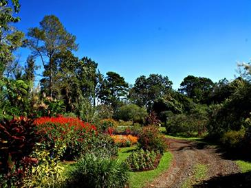eden nature park_flower garden