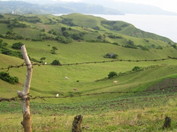 batanes tour package_rolling hills