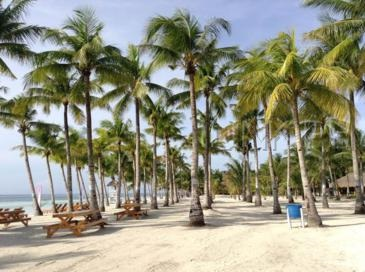 bohol beach club_beach
