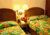cebu cheap hotels