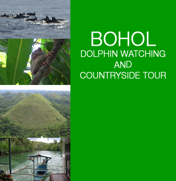 BOHOL TOUR - DOLPHIN AND WHALE WATCHING AND BOHOL COUNTRYSIDE TOUR